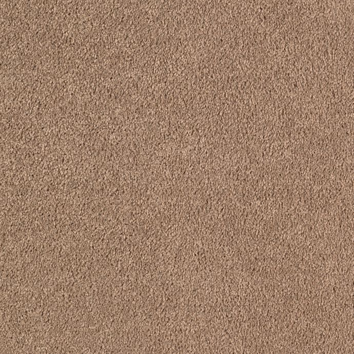 Quiet Sophistication Light Taupe 3839