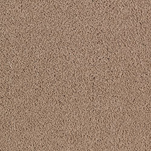 Mohawk Industries Luxurious Beauty Breathless Carpet