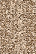 Karastan Natural Influence - Sea Oat Carpet