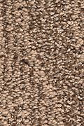 Karastan Natural Influence - Wistful Beige Carpet