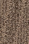 Karastan Natural Influence - Dried Peat Carpet