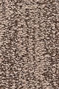 Karastan Natural Influence - Granite Carpet