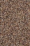 Karastan Upscale Living - Sequoia Carpet