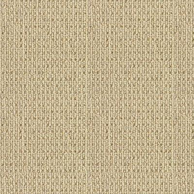Donnington in Lambourne - Carpet by Mohawk Flooring