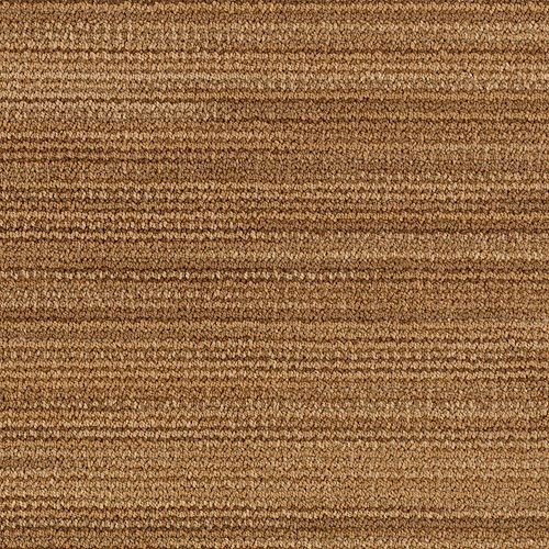 Variegato Early American 00246