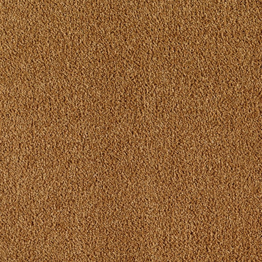 ProductVariant swatch small for Golden Tapestry flooring product