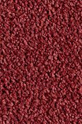 Karastan Indescribable - Rich Color Carpet