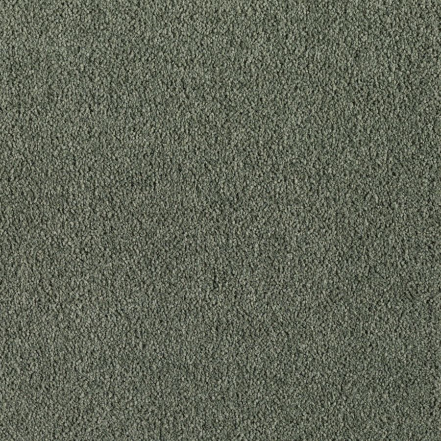 ProductVariant swatch small for Moss Tint flooring product