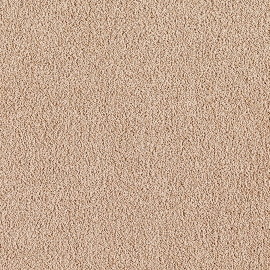 ProductVariant swatch small for Chenille Charm flooring product