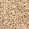 Remarkable Beige