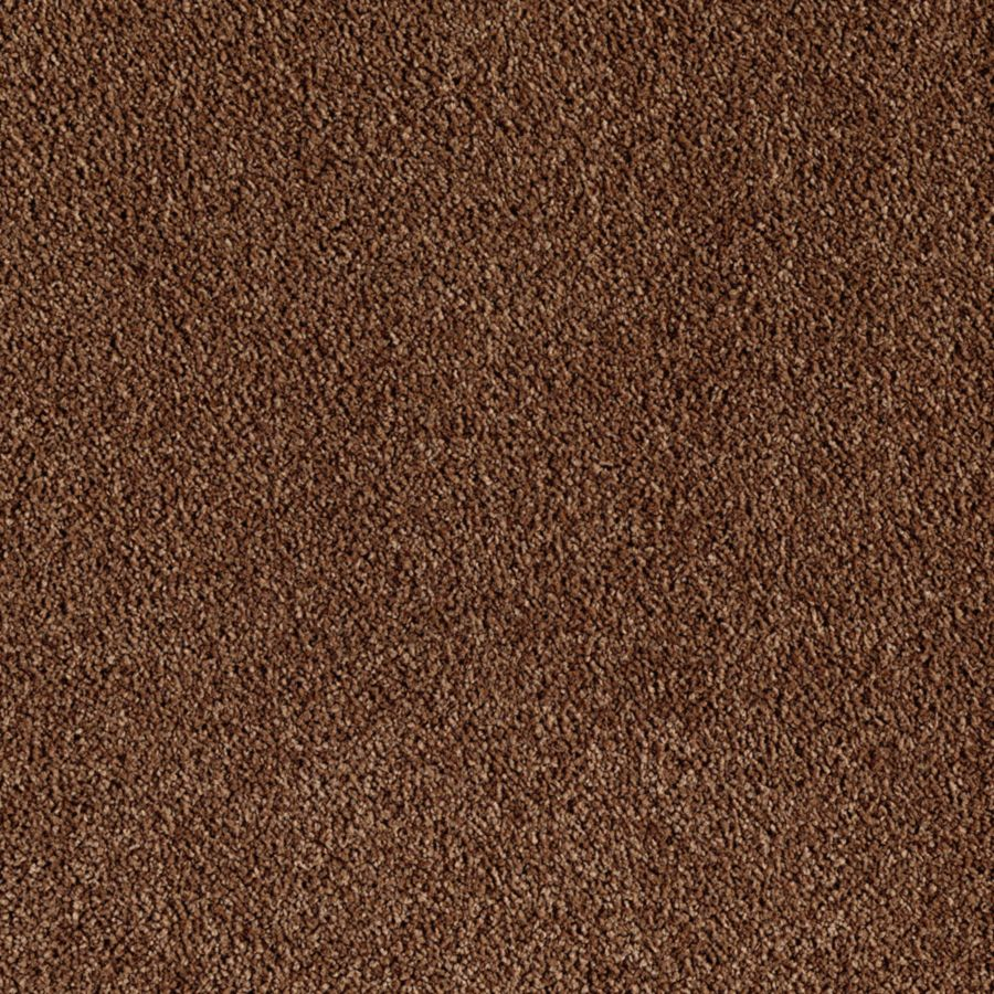 ProductVariant swatch small for Surprisingly Plush flooring product