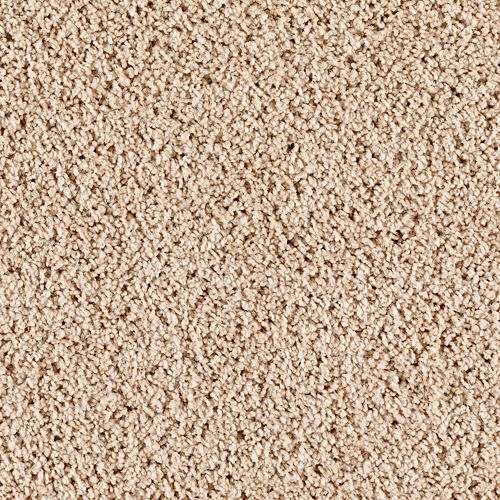 Instant Attraction Sandy Neutral 9723