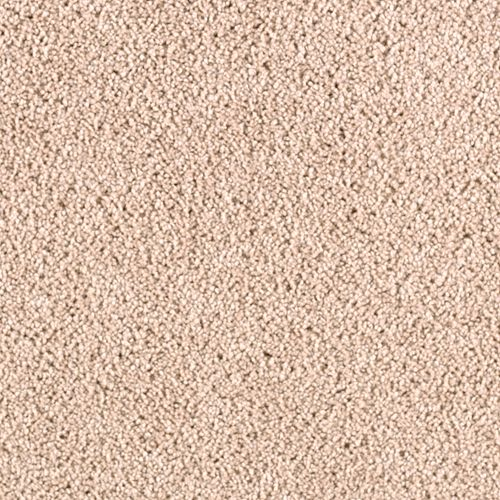 Excellent Selection Coastal Tan 6728
