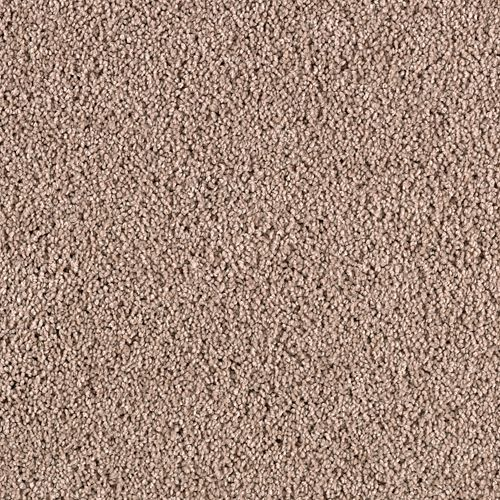 Excellent Selection Vienna Beige 6753