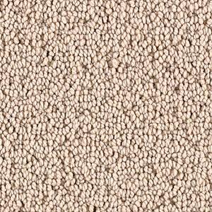 Canvas Cloth