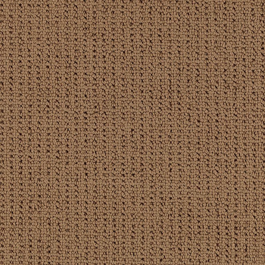 Safari Plains