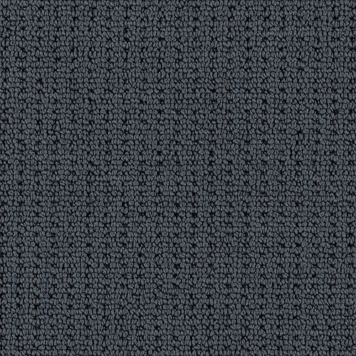 Avalon Park Charcoal Shade 9998