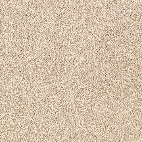 Mohawk Industries Somerset Cove Coastal Beige Carpet Marion In Staggs Floor Covering