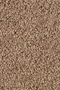 Karastan Island Fantasy - Driftwood Carpet