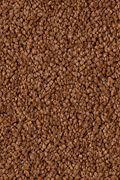Karastan Island Fantasy - Spiced Tea Carpet
