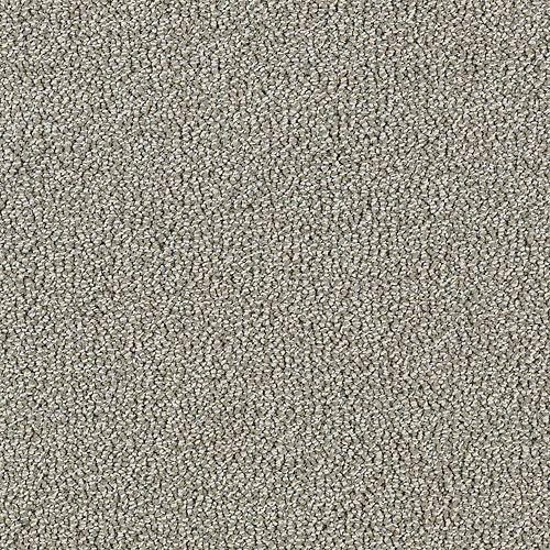 Modern Always Flax Seed 9935