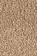 Karastan Beautiful Destiny - Barely Brown Carpet