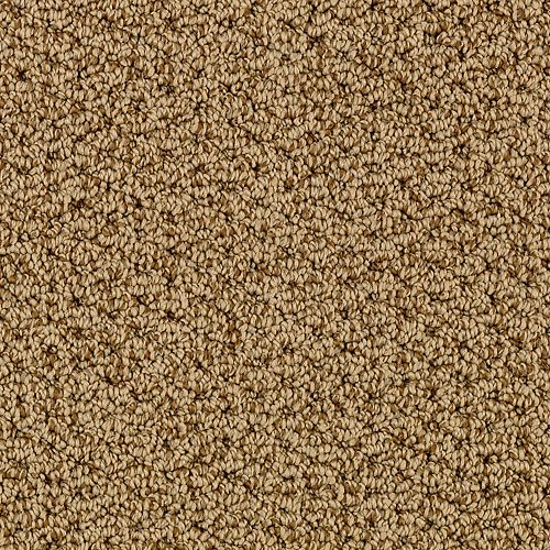 Tonal Charm Autumn Brown 9871