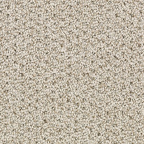 Mohawk Industries Modern Wonder Toasted Almond Carpet