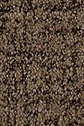 Karastan Formal Affair - Catskill Brown Carpet