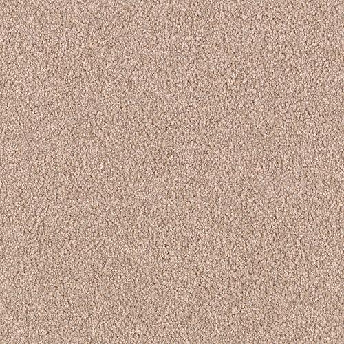 Stunning Artistry Bashful 9713