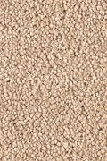 Karastan Kings Road - Toasted Almond Carpet