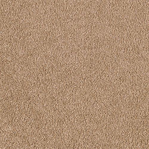 Stunning Artistry Camel 9858