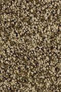 Karastan Dazzling Event - Ivy Border Carpet