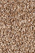 Karastan Dazzling Event - Mushroom Cap Carpet
