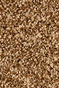 Karastan Dazzling Event - Autumn Brown Carpet