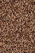 Karastan Dazzling Event - Thoroughbred Carpet