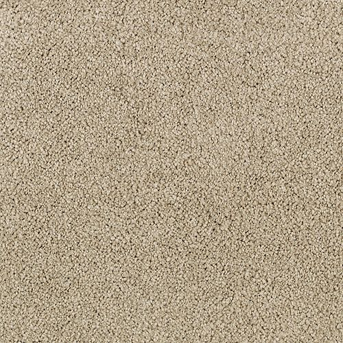 Pristine Beauty Stucco Greige 9828