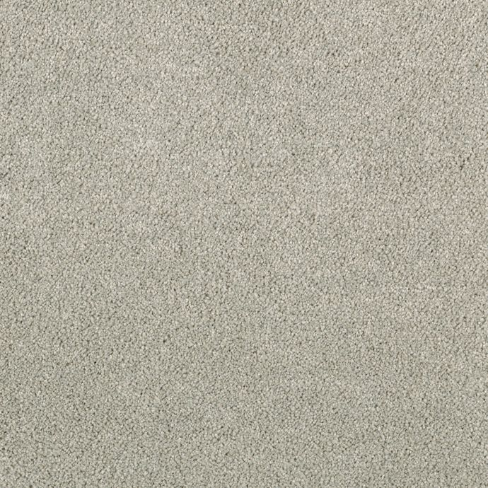Elegantly Soft Classic Grey 9929