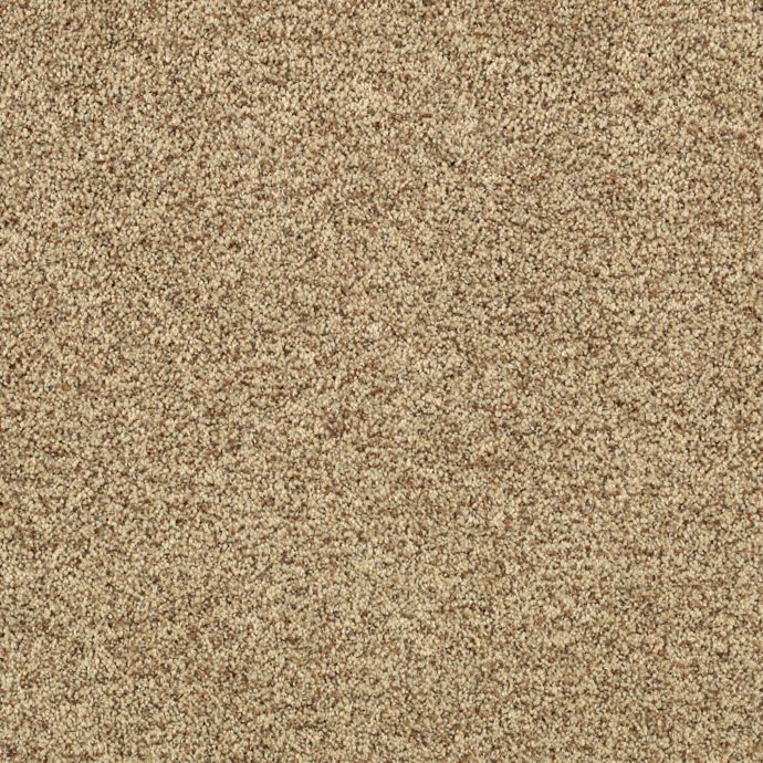 Rustic Renderings Beech Bark 9841