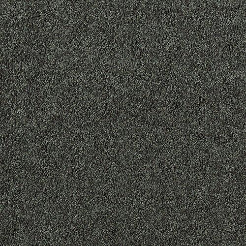 Enhanced Beauty in Mistletoe - Carpet by Mohawk Flooring