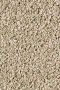 Karastan Enhanced Beauty - Mesquite Chip Carpet