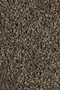 Karastan Enhanced Beauty - Mocha Glaze Carpet