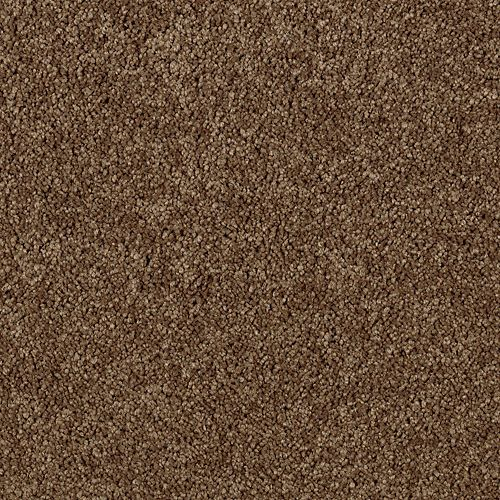 Mohawk Industries Authentic Heirloom Sequoia Carpet