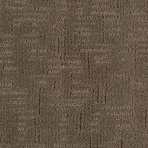 Bold Beauty Stucco Greige 9889