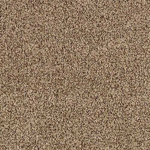 Mohawk Industries Gentle Embrace Beach Pebble Carpet