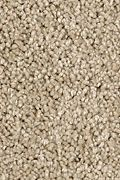 Karastan Delightful Charm - Blonde Willow Carpet