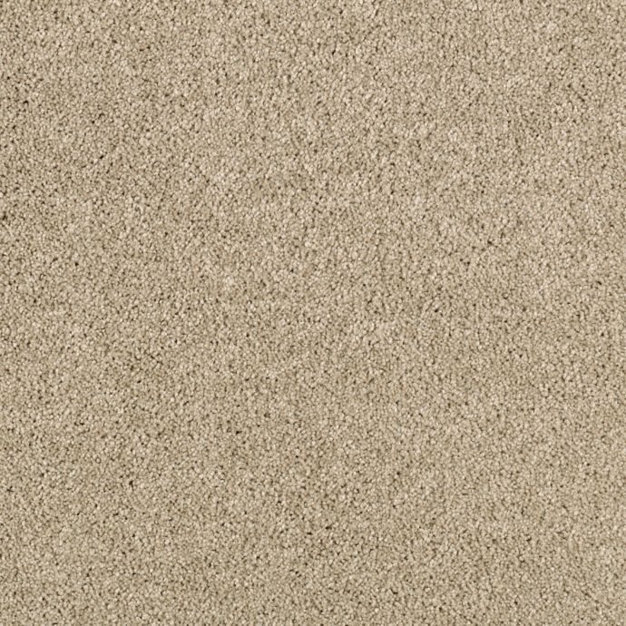 Luxurious Appeal Mesquite Chip 9748