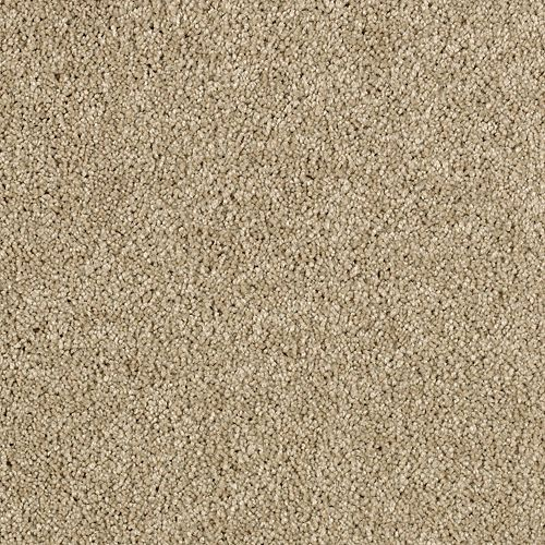 Delicate Finesse Brushed Suede 9758