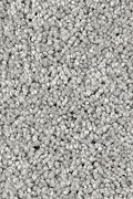 Karastan Delicate Finesse - Classic Grey Carpet