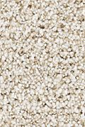 Karastan Dover Coast - Wild Silk Carpet